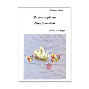 Le cœur capitaine d'une funambule de Norlane Deliz
